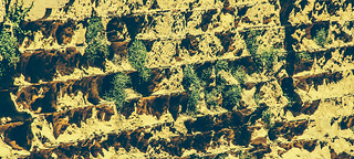 Billede af  Bellver Castle i nærheden af  Palma de Mallorca. 2 castle canon de photography eos rebel spring kiss mark may mai ii mallorca palma château cristian castillo mk castel majorca castell bellver castelldebellver primavara 500d maiorca замок 섬 2013 bortes майорка востраў bortescristian cristianbortes x3l マヨルカ島 t1i 馬略卡島 मायोर्का מיורקה 마요르카 ميورقة мальёрка مایورکا maļorka 贝利韦尔城堡 бельвер