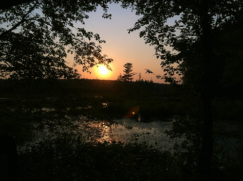 [142/365] Sunset