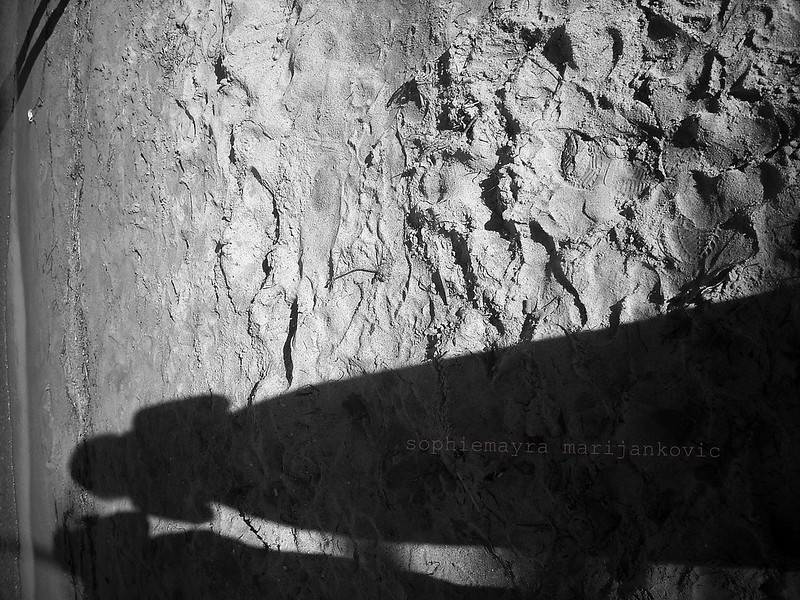 silhouette series/02