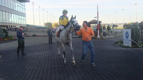 Delaware Shipper Back For Dinner With Shannon Uske Aboard In Winner's Circle After Meadowlands Nightcap
