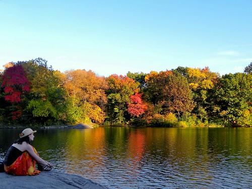 Central Park Contemplation