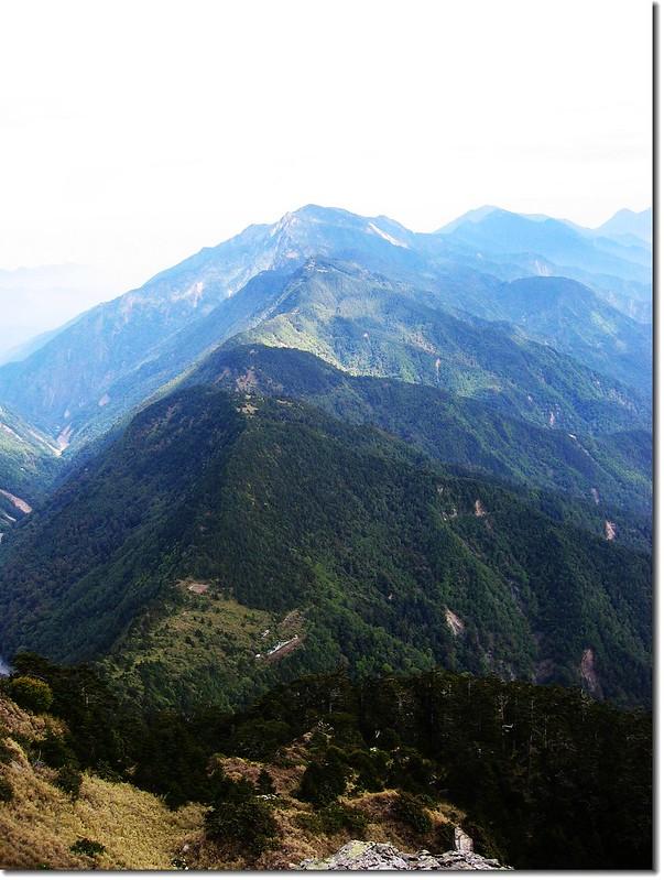 觀高登山服務站(八通關山俯瞰)