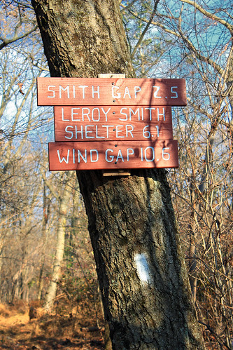 White AT Blaze and signs at the Delps Trail–Appalachian Trail junction