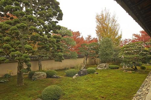 【写真】紅葉 : 天得院