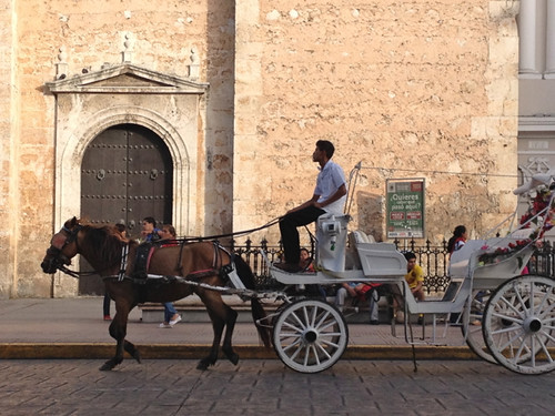 Merida Catedral and horse and cart