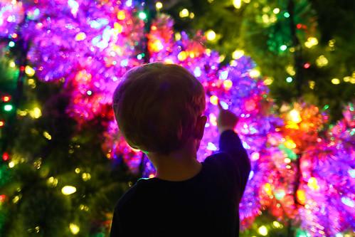 Celebration of Lights-11.jpg