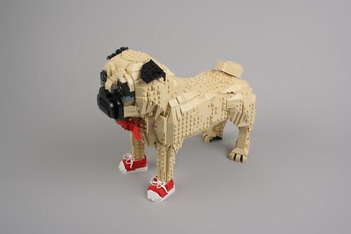 Cool Puggie