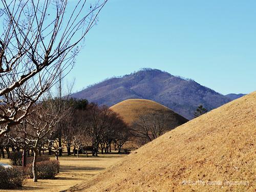Una de las principales atracciones en Gyeongju es visitar sus numerosos túmulos funerarios construidos bajo tierra