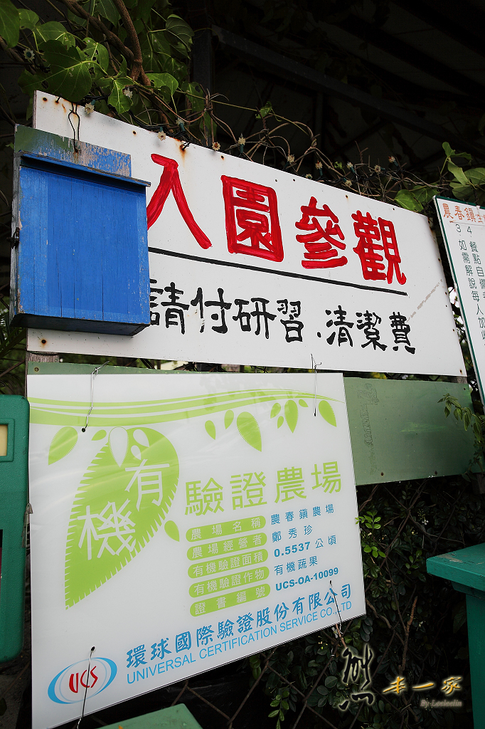 高雄阿蓮親子景點 農春鎮生態教育農場