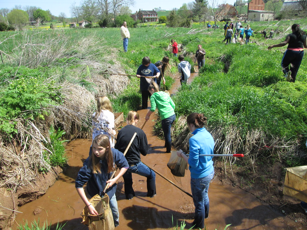 Students in Carroll County assessing stream health.