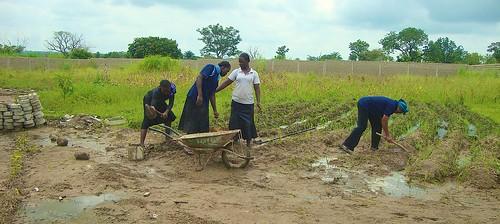 The Postulants preparing the land at the new postulancy at Dassa Zoumé, Republic of Benin