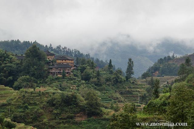 Longji (Dragon's Backbone) Terraced Rice Fields