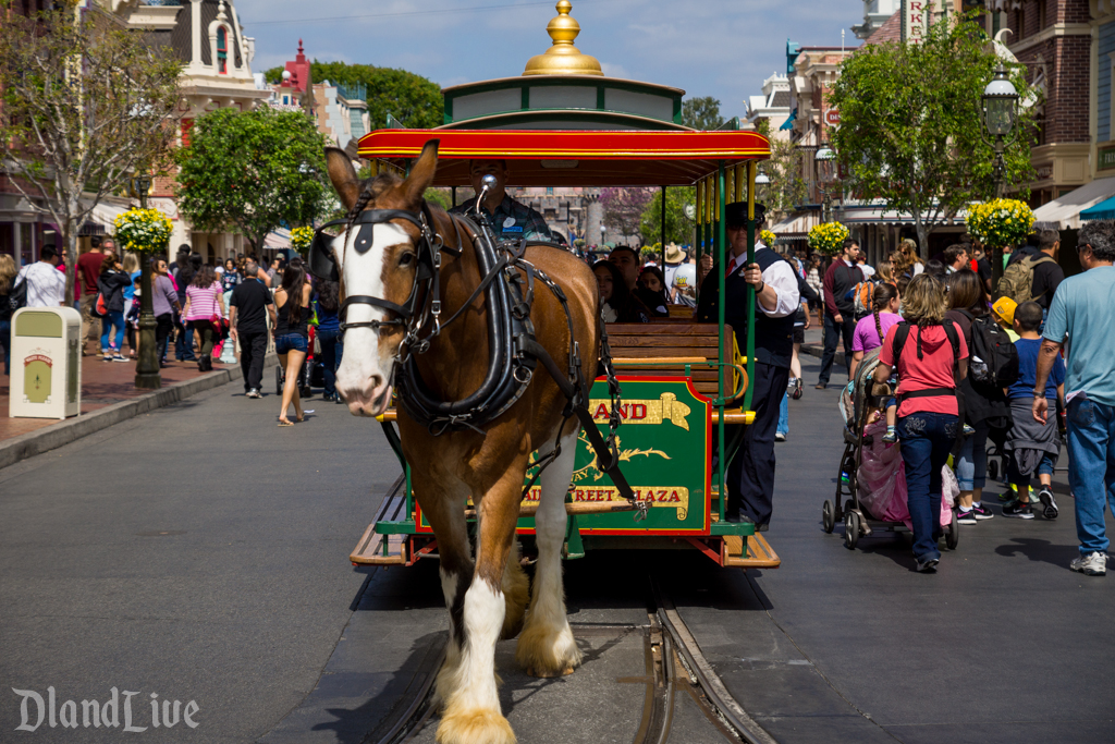 Disneyland Horsedrawn Street Car