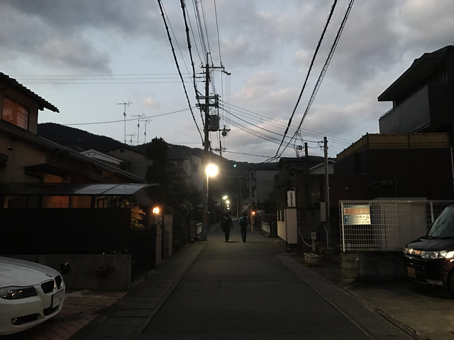 Dawn at Arashiyama