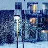 #Spring #Snow #seasons #minnesota