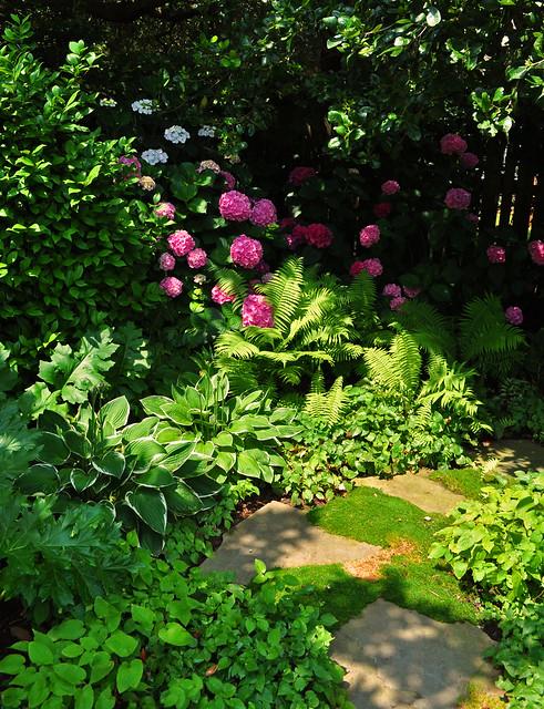 Goodman Garden (6)