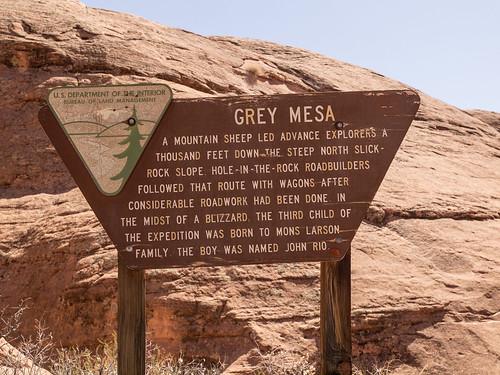 Gray Mesa