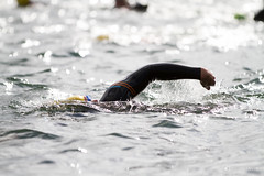 endurance sports, individual sports, open water swimming, swimming, sports, outdoor recreation, wind wave, extreme sport, wave, swimmer, water sport, freestyle swimming,