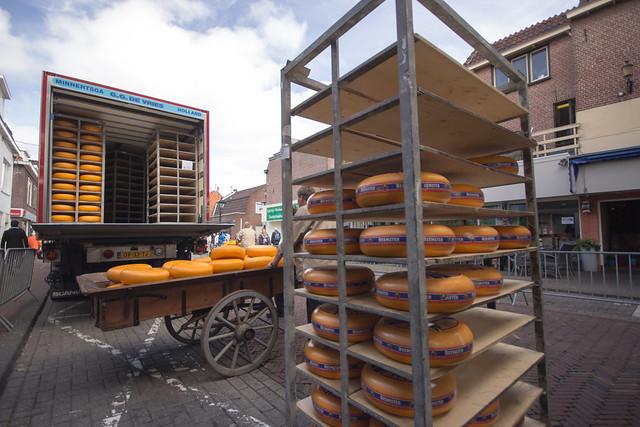 alkmaar cheese market wheels