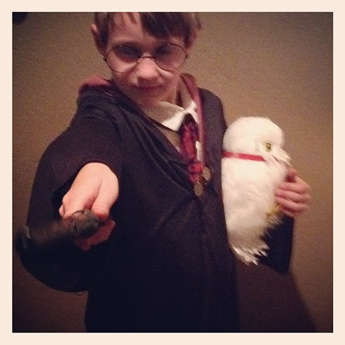 My Harry Potter #halloween #harrypotter