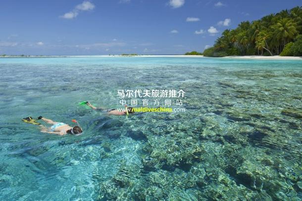 马尔代夫一日游