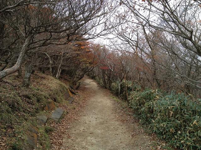 御在所岳 中登山道から山頂へ