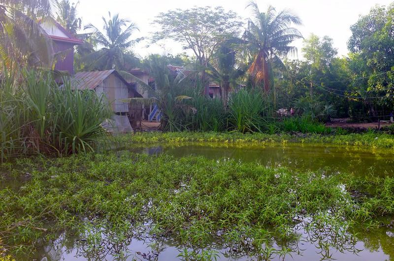 Kampong Thom - 03