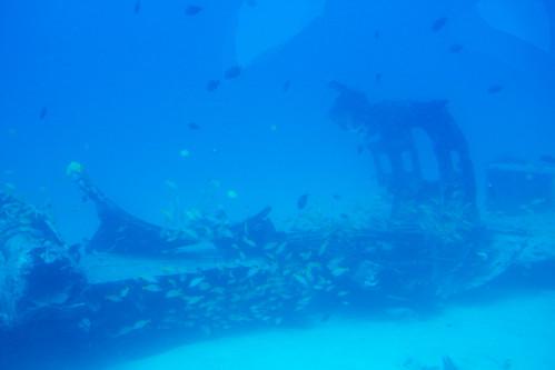 海中の漁礁