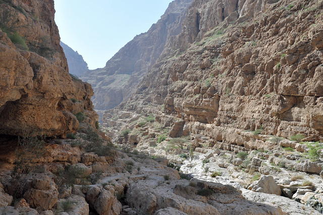 Wadi Shab (11)