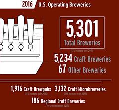 2017_U.S. 'Craft' Beer Business