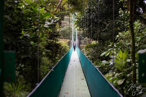 Costa Rica Day 8 (Monte Verde/Arenal)
