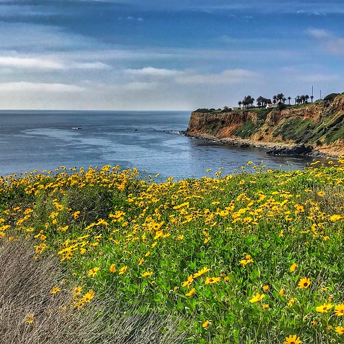 losangeles spring palosverdes waterfront ocean hdr california southbay socal