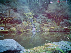 Japeanese Garden