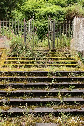 Escalinata verde