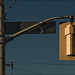 yellow_traffic-light_dark-blue-sky_01