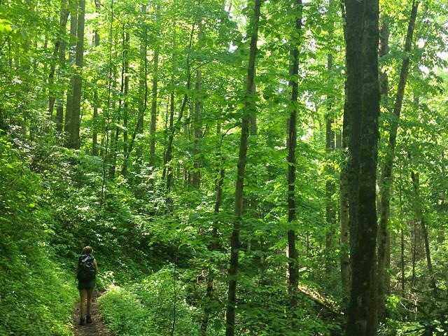 Hike Andrea2