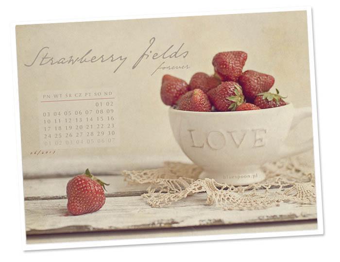 tapeta z kalendarzem na czerwiec 2013 blue spoon