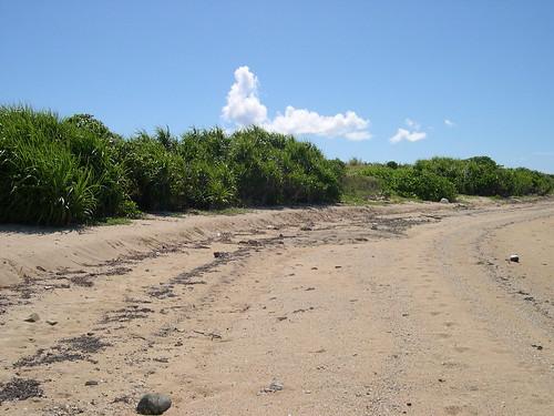 せんたく板の浜1