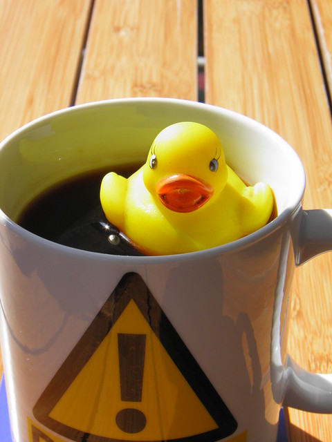 Early Morning coffee, with duck additive. from Flickr via Wylio