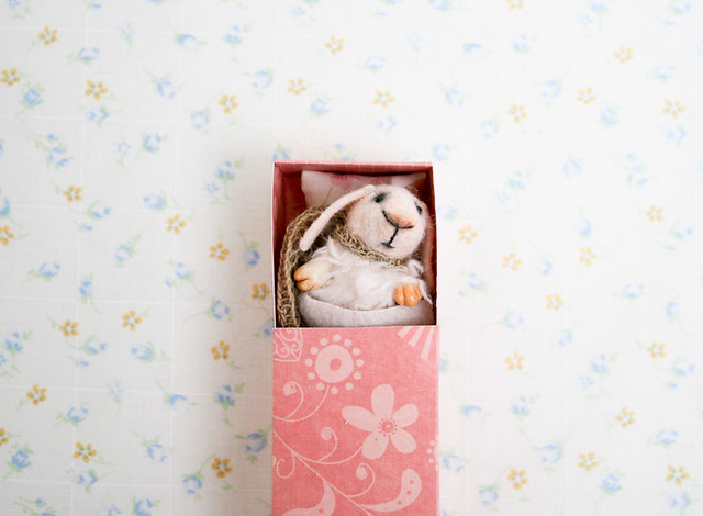 bunny in a matchbox