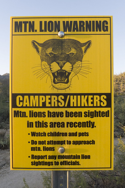 Mountain Lion warning!