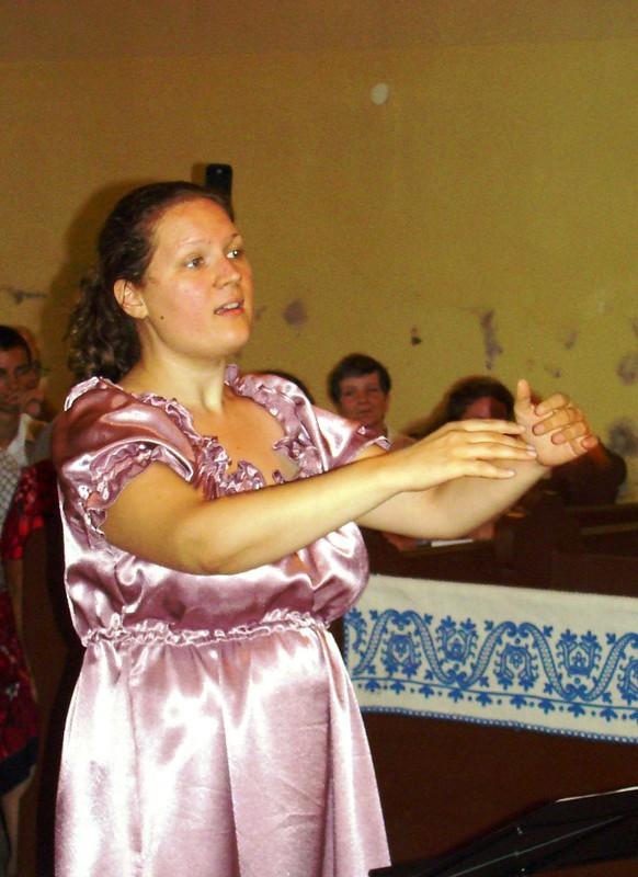2010, Telkibánya