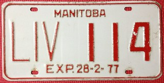 MANITOBA 1976 (EXP 28-2-77) ---LIVERY LICENSE PLATE