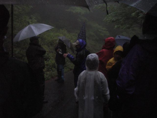 雨が降ったり止んだりで歩きながらの観察も一苦労.そんな中,上野先生は熱心にレクチャー.