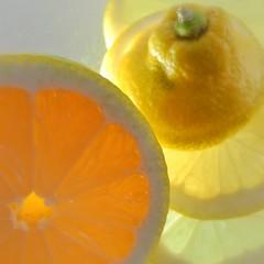 Zitronenscheiben auf Strukturglasplatte im Gegenlicht.
