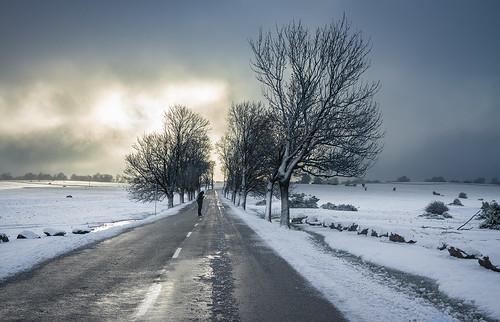 La carretera, la nieve y Carla