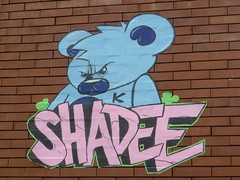 Shadee K