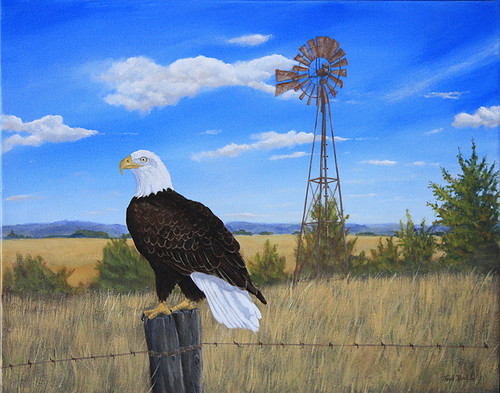 Bald Eagle by Sid's art