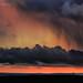 Red Rain by calderdalefoto