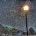 Snowfall on Street Lamp by trustypics